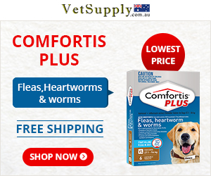 Buy Comfortis Plus Chewable Tablets For Dogs online at cheapest prices.