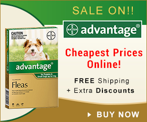 Green Monday deals, with low prices and sales on flea, tick & heartworm products of pets.