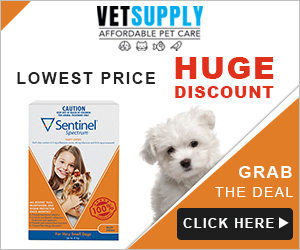 Sentinel Spectrum Tasty Chews for dogs will prevent heartworm (Dirofilaria) infection.