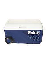Esky 65L Ice King Cooler