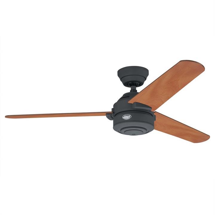 Hunter Carera Graphite Ceiling Fan with Chestnut / Graphite Switch Blades