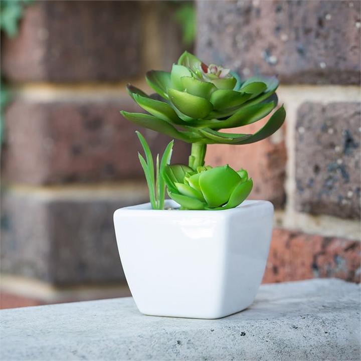 Artificial Cacti Bloom in Pot