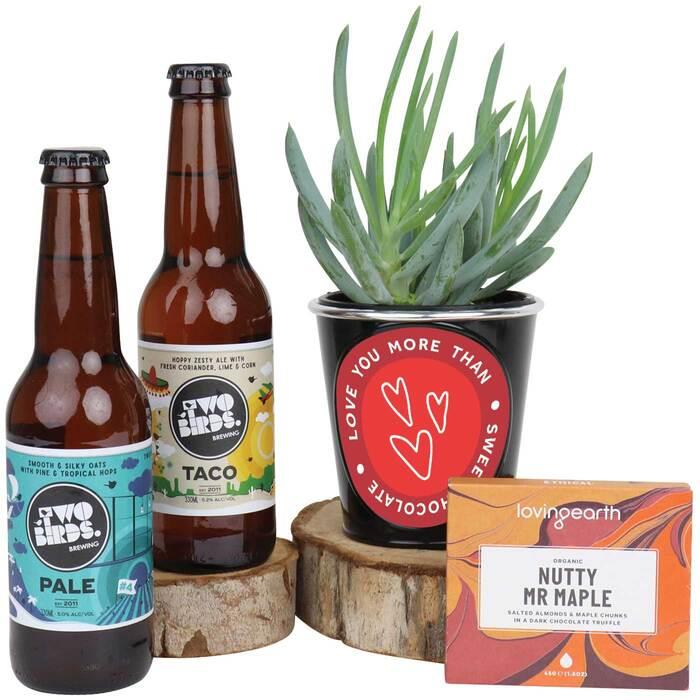 Image of Mothers Day Valentine Succulent & Craft Beer Hamper