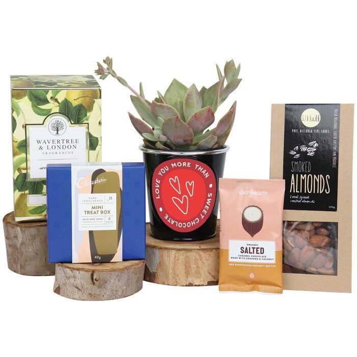 Image of Mothers Day Valentine Succulent Gourmet Hamper