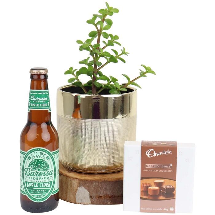 Image of Mothers Day Money Tree and Cider Gift