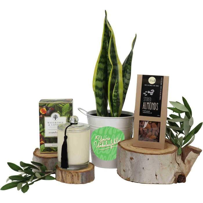 Image of Mothers Day You're Unbeleafable Tongue Pamper Hamper