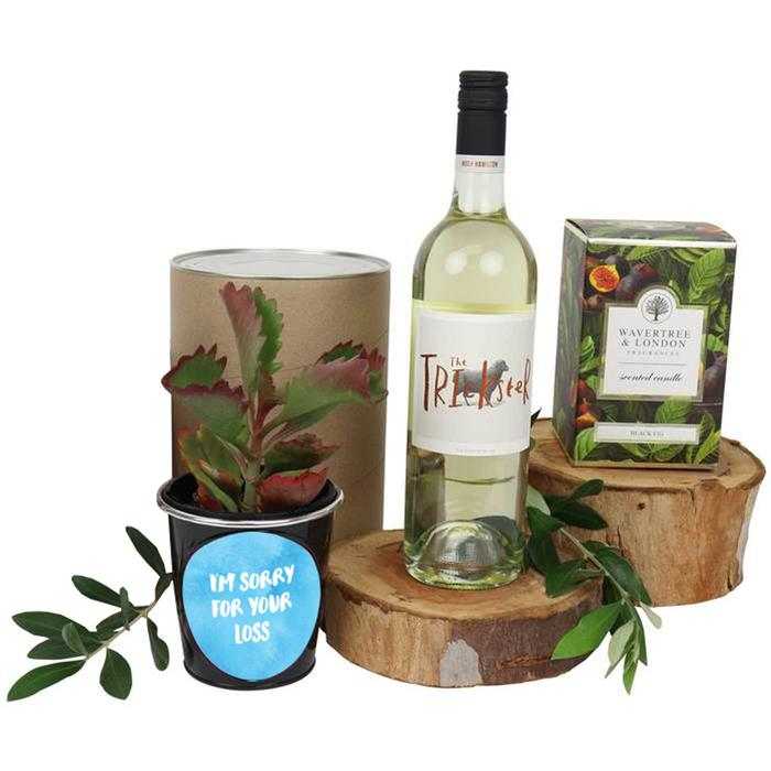 Edible Blooms : I'm Sorry for Your Loss Succulent and White Wine Hamper