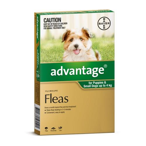 Image of Advantage Small Dogs and Puppies Under 4kg Green 4pk
