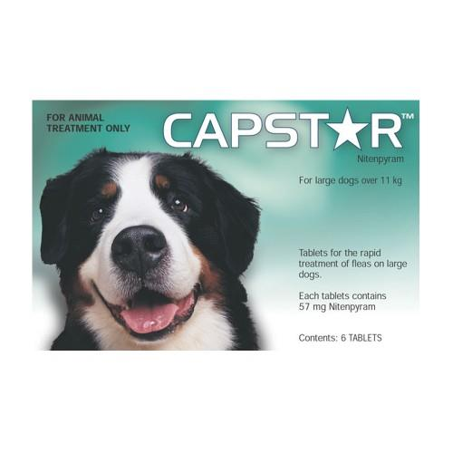 Capstar Large Dogs Over 11kg 6 pack