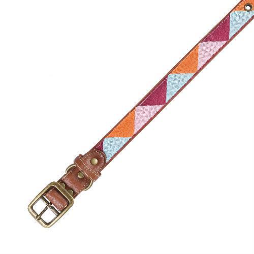Cara Pet Lyon Dog Collar Medium
