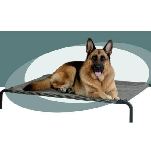 Cara Pet Elevated Trampoline Pet Bed Large