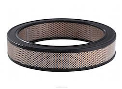 Image of Ryco Air Filter A142