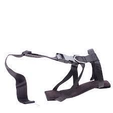 Image of Accessories - Vehicle Seat Belt Restraint Harness for Dog Large Size