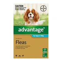 Image of Advantage For Medium Dogs 4 To 10kg (Aqua) 6 Doses
