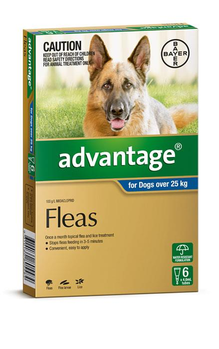 Image of Advantage For Extra Large Dogs (Over 25kg) - 6 Pack