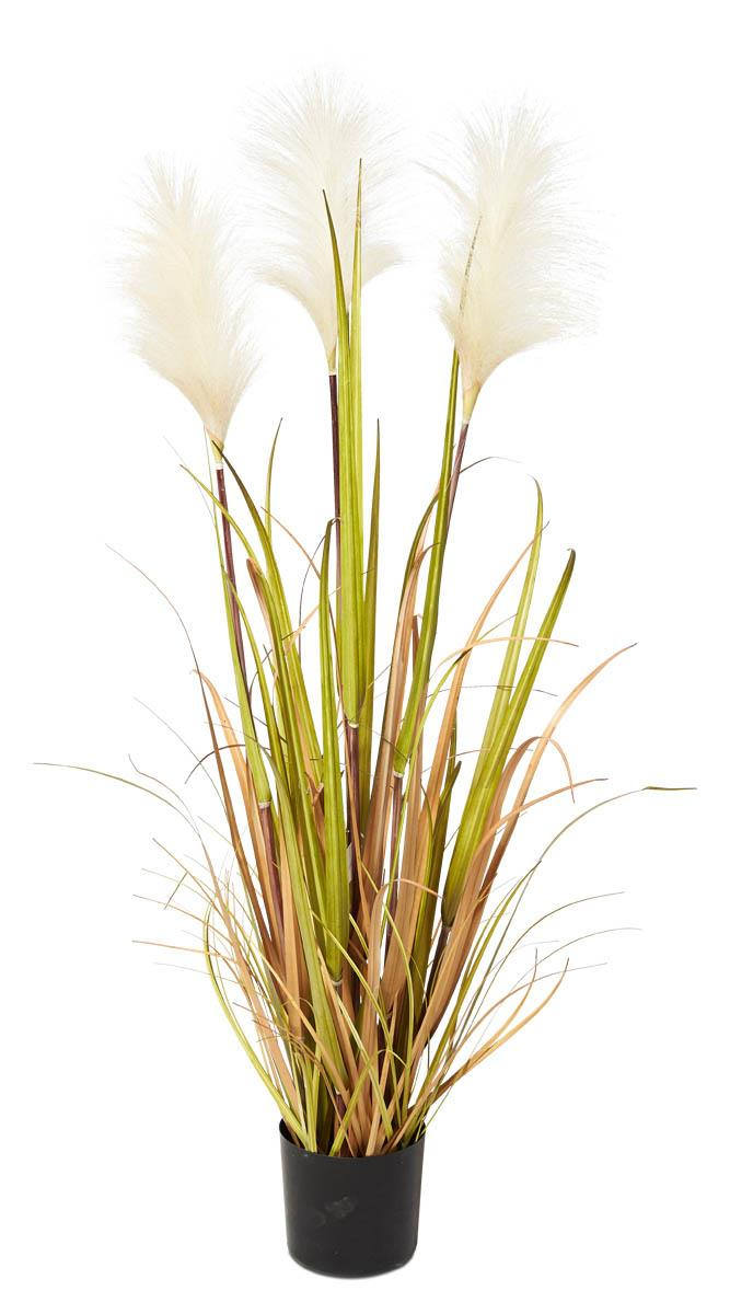 Image of Tall Grass Reed with Pot 90cm - Green