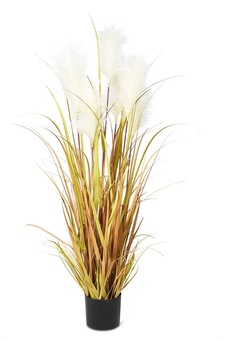 Image of Tall Grass Reed with Pot 127cm - Green