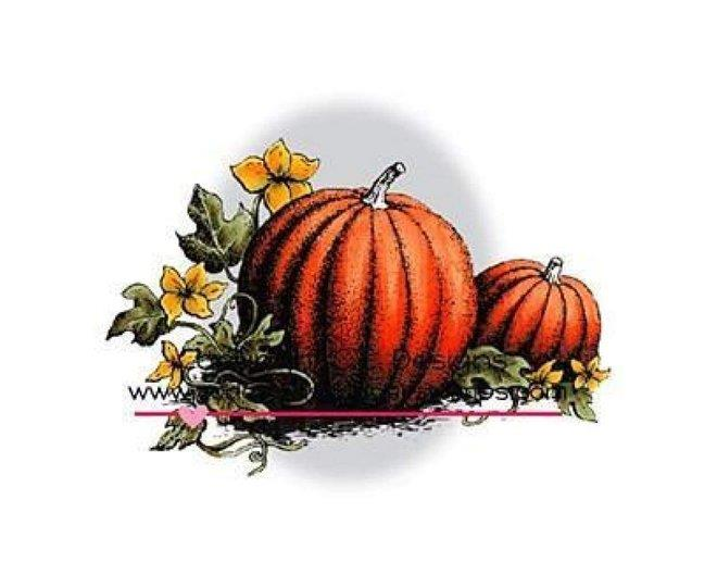 cfp_95134324 logo