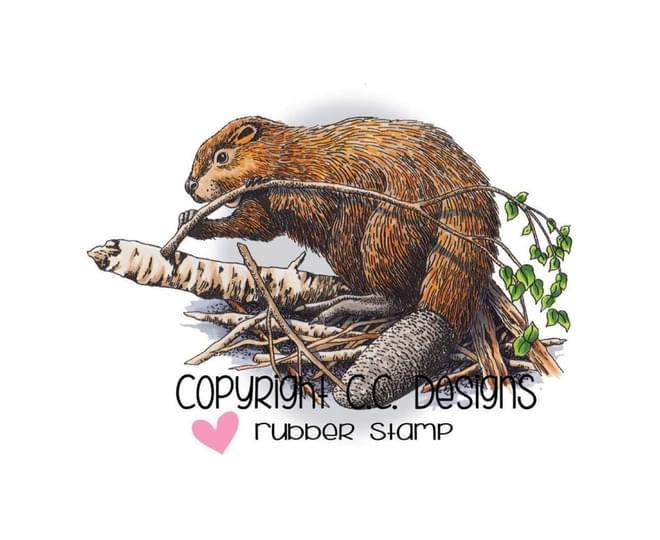 cfp_95136937 logo