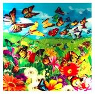 Image of 3D LiveLife Holographic Large Greeting Card - Butter Flutter