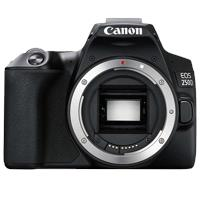 Image of New Canon EOS 250D Body Only Kit Box Black Digital Cameras