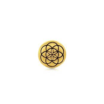 cfp_74911194 logo
