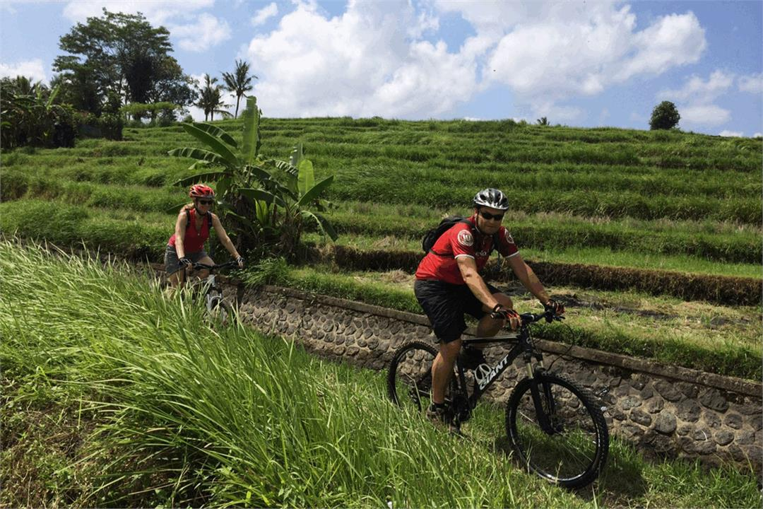 Bali Mountain Biking Adventure