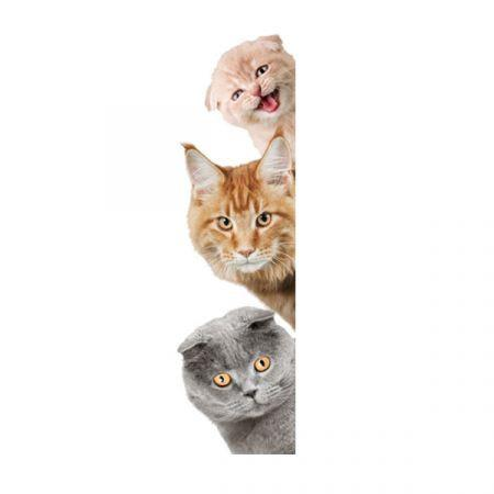 Image of 3D Wall Stickers Cats PVC Self Adhesive Removable DIY Decoration