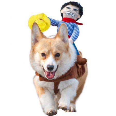 Pet Funny costume Size XL