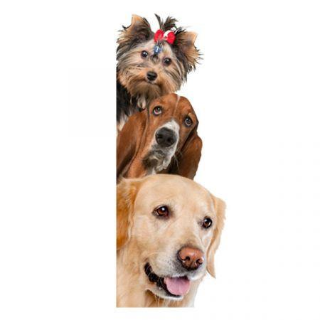 3D Wall Stickers  Dogs PVC Self Adhesive Removable DIY Decoration