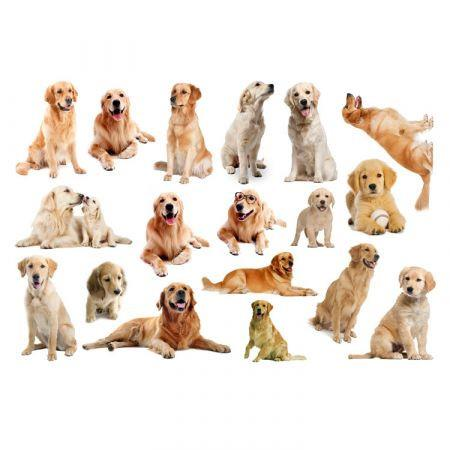 Image of 3D Wall Stickers Dogs PVC Self Adhesive Removable DIY Decoration Golden Retriever