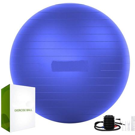 Image of Exercise Ball (65cm) Extra Thick Yoga Ball Chair (Purple)