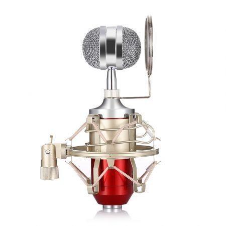 Image of LEIHAO BM - 8000 Professional Condenser Microphone