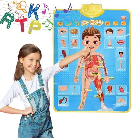 Image of Interactive Educational Human Anatomy Talking Game Toy System to Learn Body Parts for Kids Aged 5 to 12 Years Old