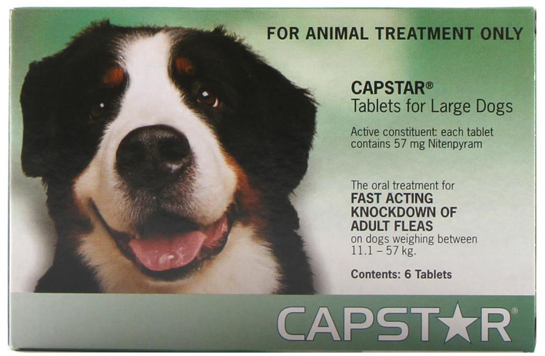 Capstar Fast Flea Knockdown for Cats and Dogs - Green - Large dogs