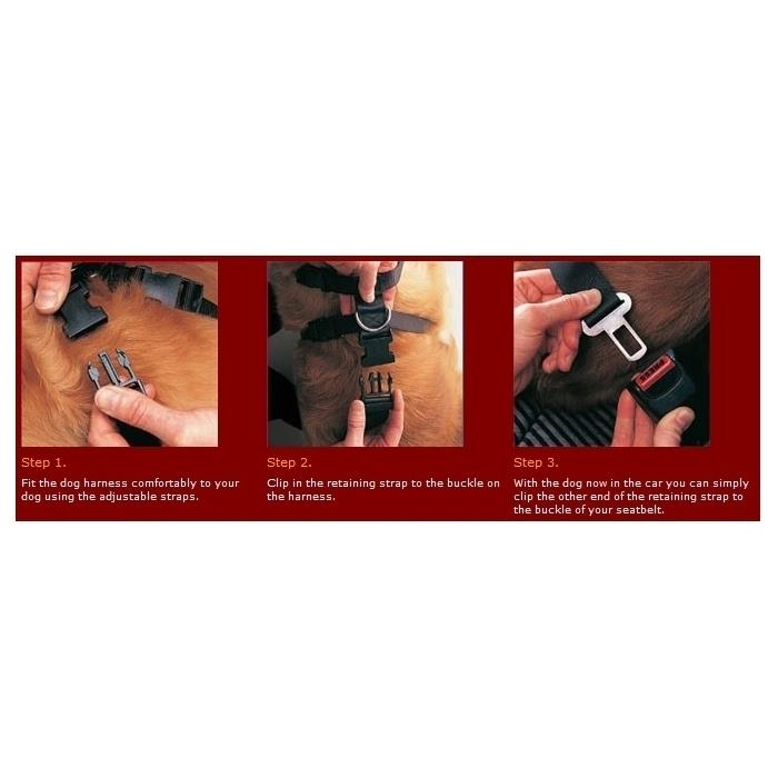 Car Harness for Dogs with Seat Belt Attachment [Size: Extra Large]