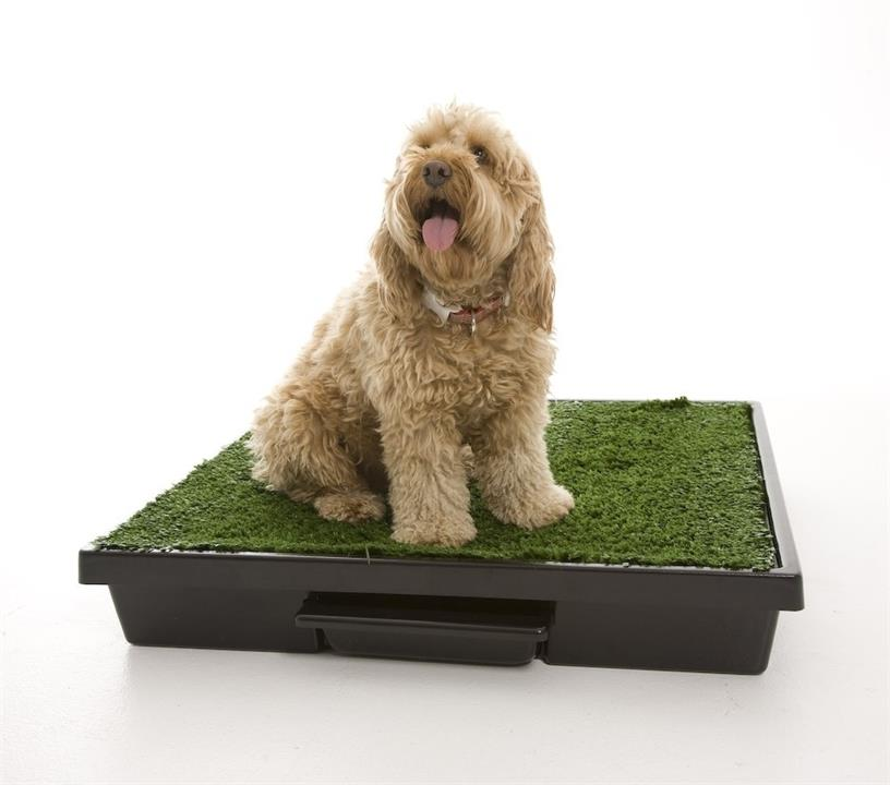 The Original Pet Loo for Indoor or Outdoor Use - Large