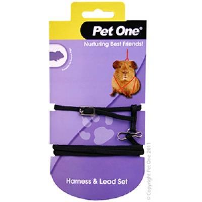 Pet One Guinea Pig Lead & Harness Set Black