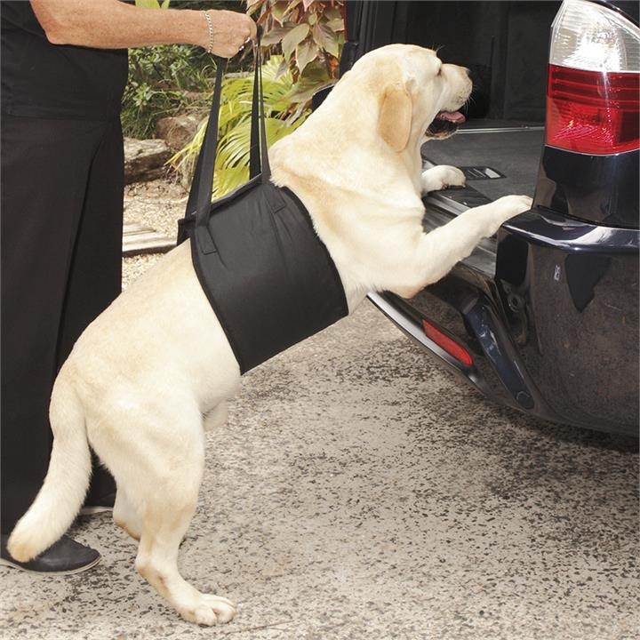 Image of Dog Lifting Harness