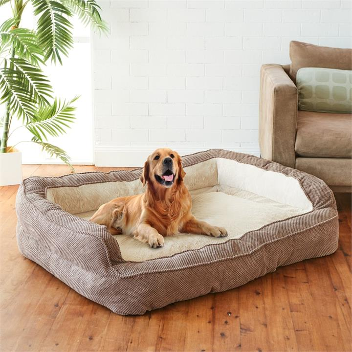 Image of Luxurious Pet Sofa Bed