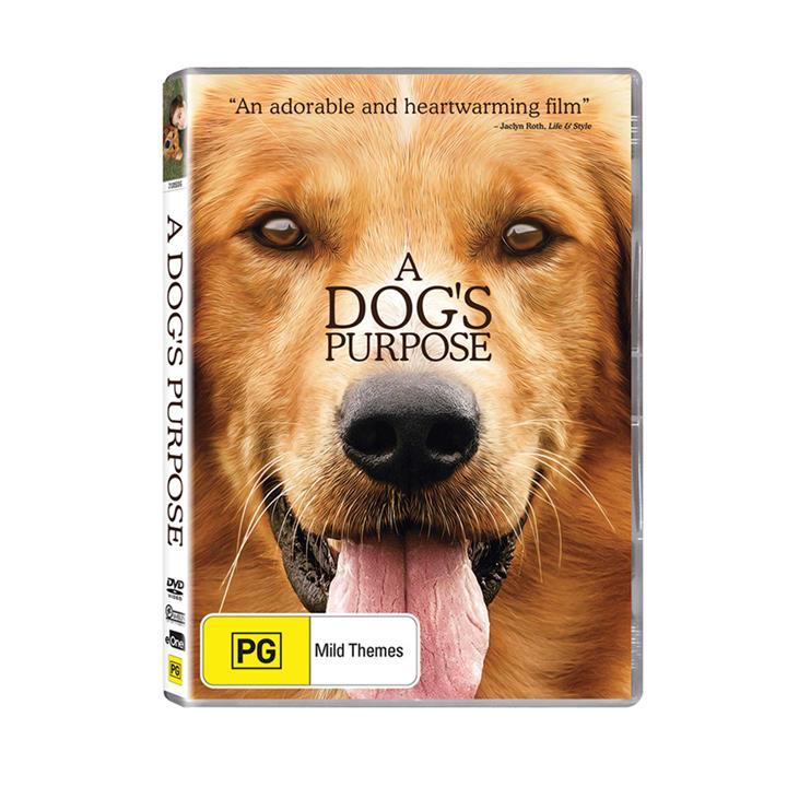 Image of A Dog's Purpose (2017) DVD